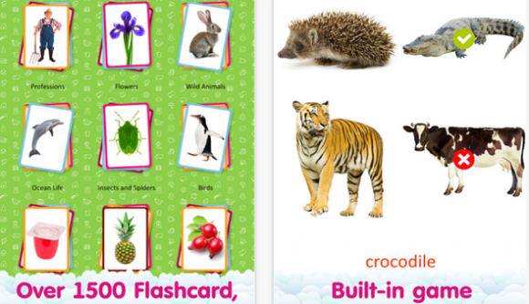 flashcards4
